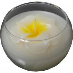 Francipani - Kerze im Glas,...